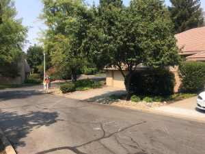 8211 Fox Meadow Place For Sale Active 04